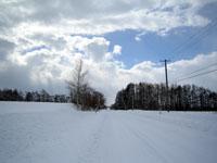 真っ白な道路、青い空
