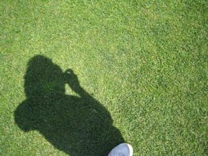 芝生の上で