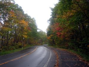 紅葉の湖畔道路