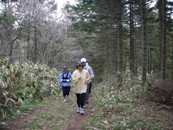 林道を走るメンバー