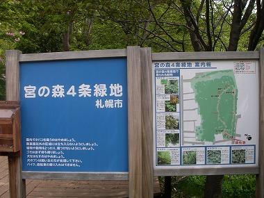 宮の森4条緑地