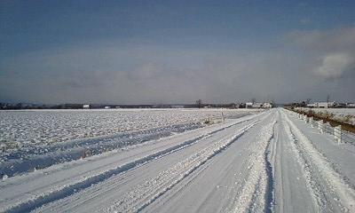 真っ白な農道
